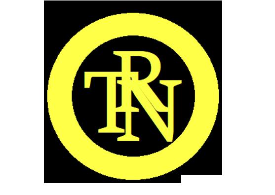Logo torino fs